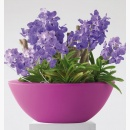 BD110 Doniczka Pure Soft Bowl